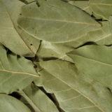 ローラル(ローリエ)の乾燥した葉